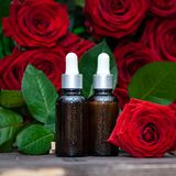 Rose oil, Bottles and fresh flower and leaves on a natural background, bio, organic ,. Nature cosmetics concept stock images