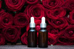 Rose oil, Bottles and fresh flower and leaves on a natural background, bio, organic ,. Nature cosmetics concept royalty free stock photo