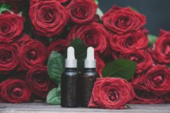 Rose oil, Bottles and fresh flower and leaves on a natural background, bio, organic , nature cosmetics. Concept stock photography