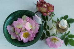 Rose oil Royalty Free Stock Photography