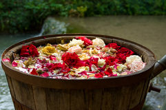 Rose oil production Royalty Free Stock Images