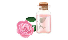 Rose oil, water. Pink Rose flower  illustration , oil Royalty Free Stock Images