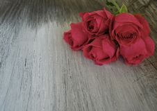 Rose on old barn wood stock images