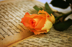 Rose on Old Book Royalty Free Stock Photos