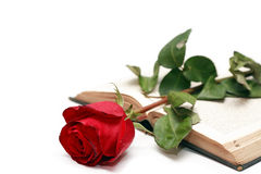 Rose On Book Royalty Free Stock Images