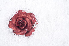 Rose ornament covered with snow Royalty Free Stock Image