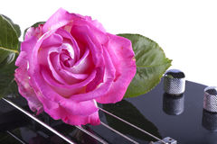 Rose over bass Stock Photography