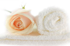 Rose over white towels. Elegant Rose over white towels Stock Photos