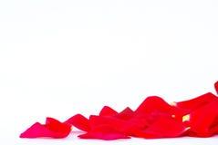 rose płatków Obraz Stock