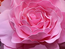Rose paper Royalty Free Stock Images