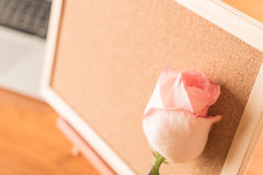 Rose with paper note Royalty Free Stock Photography