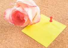 Rose with paper note Stock Photos