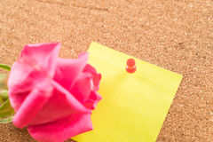 Rose with paper note Stock Images