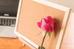 Rose with paper note Stock Photo