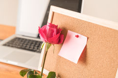 Rose with paper note Stock Image