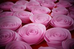 Rose paper pink. stock images