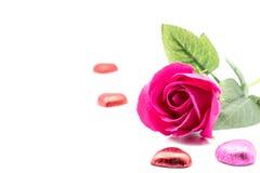 Rose para el día de tarjetas del día de San Valentín Imágenes de archivo libres de regalías