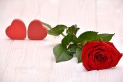 Rose para las tarjetas del día de San Valentín Imágenes de archivo libres de regalías