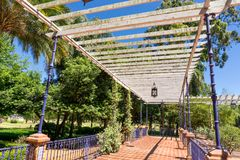 Rose Park Rosedal, Buenos Aires Argentina Immagine Stock Libera da Diritti