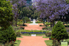 Rose Park (Rosedal), Buenos Aires Argentina Royalty Free Stock Photos