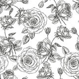 Rose pattern Stock Photography