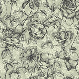Rose pattern blue Stock Photo