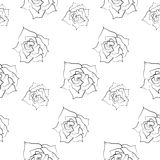 Rose pattern. Including seamless sample in swatch panel Royalty Free Stock Image