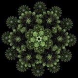 Rose pattern. Mandala pattern. Fractal design. Abstract backgrou Royalty Free Stock Photography