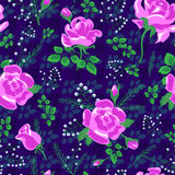 Rose pattern new 3-01 Royalty Free Stock Photo