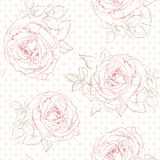Rose pattern with Polka dot Stock Images