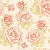 Rose pattern with Polka dot 2 Stock Images