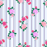 Rose pattern stripes-01 Stock Images