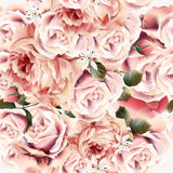 Rose pattern with vector realistic pink light roses for design. Flower rose pattern with vector realistic pink light roses for design Royalty Free Stock Photo