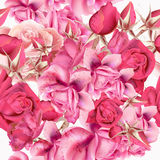 Rose pattern with vector realistic pink roses for design. Flower rose pattern with vector realistic pink roses for design Royalty Free Stock Image