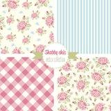 Rose Patterns chic minable Configuration sans joint réglée Modèle floral de vintage, milieux Photos stock