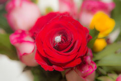 Rose, pearl and diamond ring. Rose, rose petal, pearl and diamond ring Royalty Free Stock Image