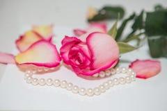 Rose, pearl and diamond ring. Rose, rose petal, pearl and diamond ring Stock Photo