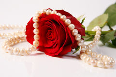 Rose & pearls Royalty Free Stock Photos