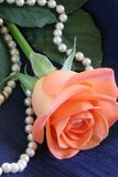 Rose and Pearls Royalty Free Stock Photography