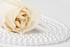 Rose and pearls Stock Photos