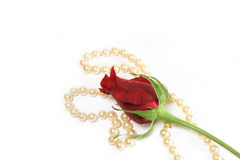 Rose And Pearls Stock Image