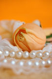Rose and Pearls. Delicate apricot rose on lace and pearl necklace with the orange background Stock Photography