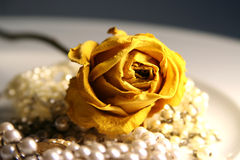 Rose on pearls. Pure luxury: flowers and jewelry - rose and pearls stock photo