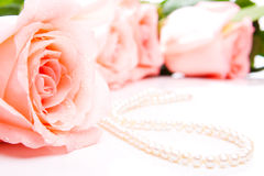 Rose with pearls Stock Photo