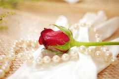 Rose and pearls with vintage glove Stock Photo