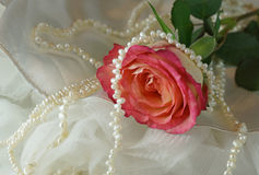 Rose and pearls on white dress. Pink rose and Pearl necklace on white dress Stock Images