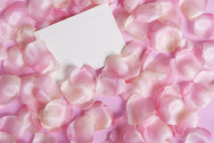 Rose pedal background Royalty Free Stock Photos