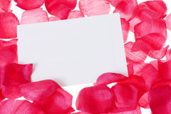 Rose pedal background Stock Photography