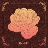 Rose, peinture décorative Illustration de Vecteur