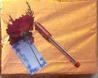 Rose pen. Pen with red rose Stock Images